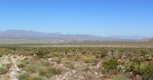 Sandy Valley NV Real Estate