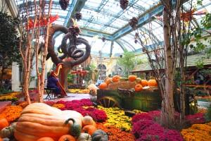 Top 10 Free Things To Do in Las Vegas NV