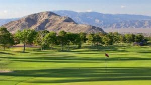 Sun City Summerlin Houses For Sale