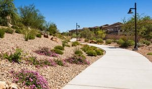 Affinity Summerlin Homes for Sale