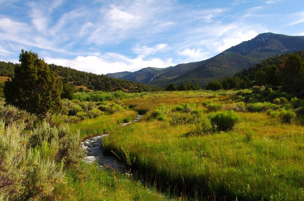 Land for Sale White Pine County Nevada